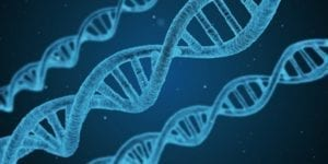 Top 100 Global Innovators: The DNA Behind Their Success – top ten takeaways